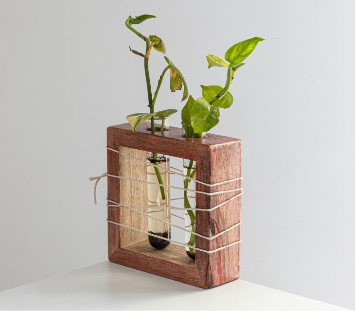 Apaiser Mango Wood Succulent Holder with 2 Test tubes