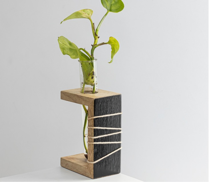 Prakriti Mango Wood Succulent Holder with 1 Test tube